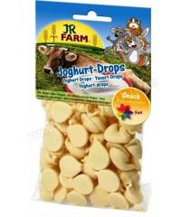 JR FARM  Лакомство для грызунов Драже с йогуртом 75г