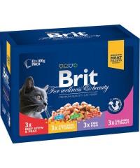 Паучи Brit Premium набор для кошек «Семейная тарелка» 100 г х 12 шт