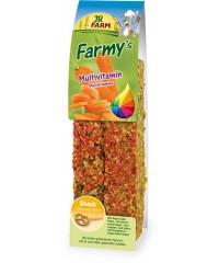 JR FARM  Палочки для грызунов Мультивитаминные 160г