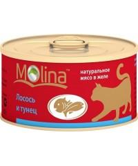 Molina консервы для кошек Лосось с Тунцом в желе 80г
