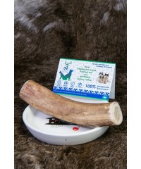Рога северного оленя лакомство для крупных пород собак
